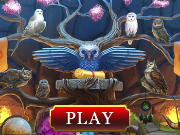 Riddles of the Owls' Kingdom Полная Игра